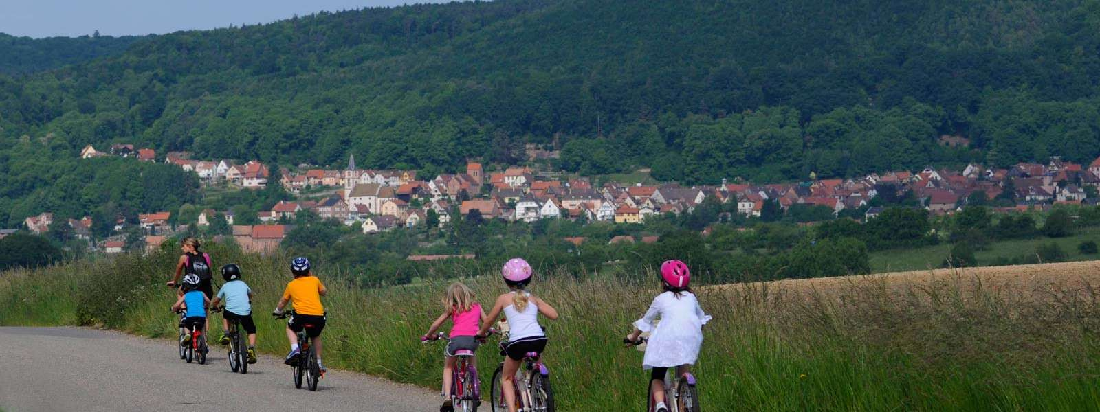 A la découverte des environs de Niederbronn-les-Bains à vélo, Alsace