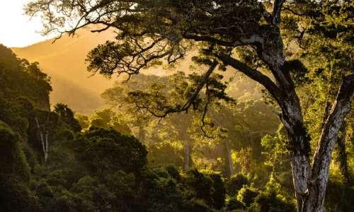 Plan Climat : qu'est-ce qu'on attend ?